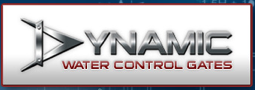 dynamic new 001
